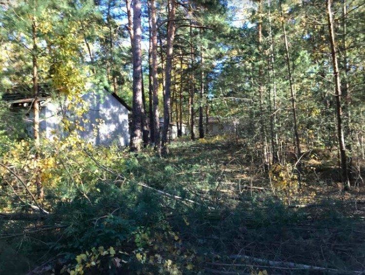 Property for Sale in Bad-Saarow, Brandenburg, Germany