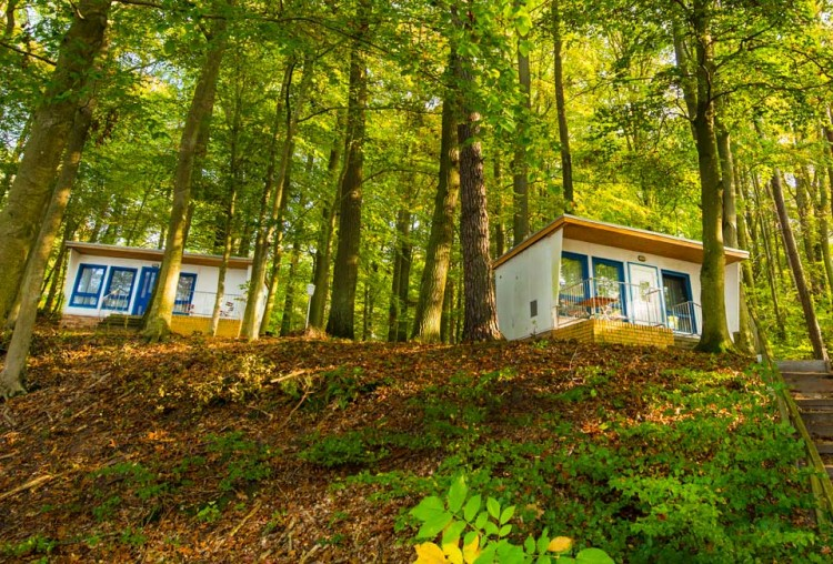 Property for Sale in Mecklenburg, Mecklenburg-West Pomerania, Germany - Thumb